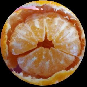 mandarijnBOL