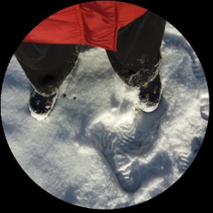 sneeuwparkBOL